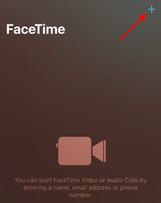 l'image FaceTime ipad