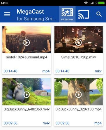 Download Megacast For PC
